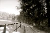 Le chemin blanc