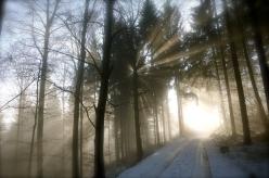 Rayons de lumière