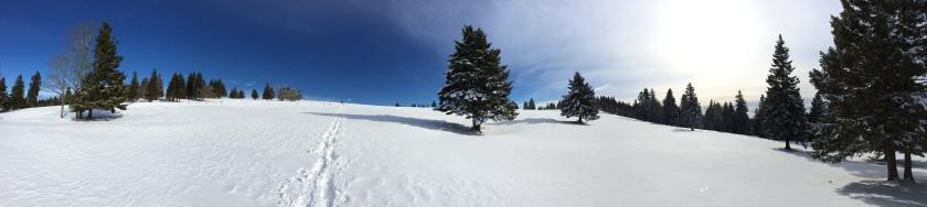En haut les alpes